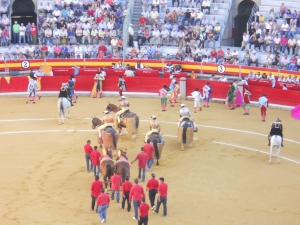 Open Ceremony  at Bull Fight