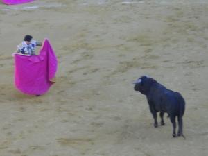 The Bull and Matador Face Off