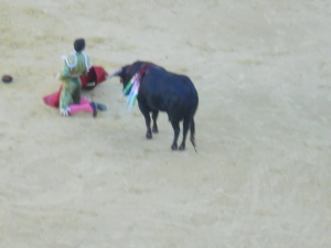 Fancy Bullfighting Tricks