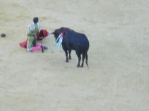 Fancy Bullfighting Tricks