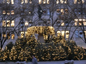 Christmas Lights in Central Park