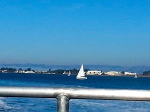 Ferry views