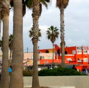 A brief of glimpse of muscle beach  in LA