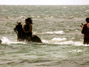 Gran turk horseback riding